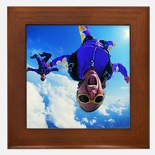 dv617066 Framed Tile