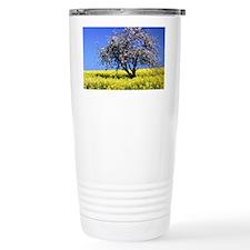 71042517 Travel Mug