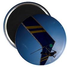 97361556 Magnet