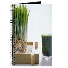 AA023263 Journal