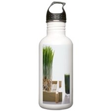 AA023263 Sports Water Bottle