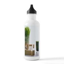 AA023263 Water Bottle