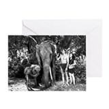 Tarzan Greeting Cards