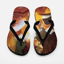 Jean-Honore Fragonard The Reader Flip Flops