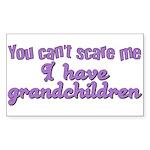 Grandchildren Rectangle Sticker
