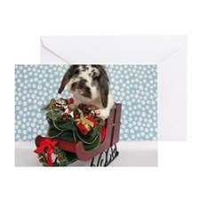 Dudley in Winter Sleigh-Full Greeting Card