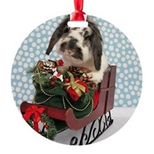 Dudley in Winter Sleigh-Full Ornament