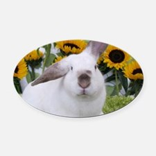 Presto with Sunflowers-1-Full Oval Car Magnet
