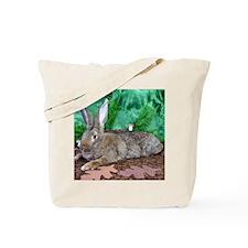 Fezzik in the Woods-2-Full Tote Bag