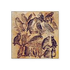 "Vintage Owls Square Sticker 3"" x 3"""