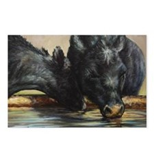 Two Black Angus Postcards (Package of 8)