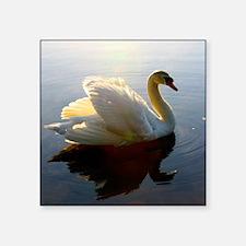 "swan shirt Square Sticker 3"" x 3"""