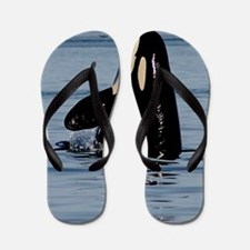 Spy Hopping Orca Flip Flops