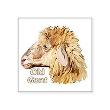 "Old goat Square Sticker 3"" x 3"""
