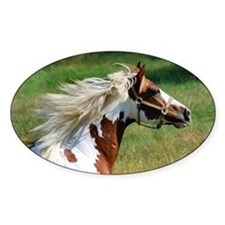My Paint Horse Profile Decal