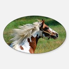 My Paint Horse Profile Sticker (Oval)