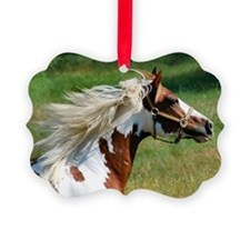 My Paint Horse Profile Ornament