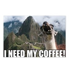 Bossy the Llama coffee Postcards (Package of 8)
