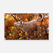 Autumn Opossum Rectangle Car Magnet