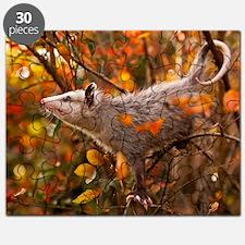 Autumn Opossum Puzzle
