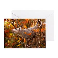 Autumn Opossum Greeting Card