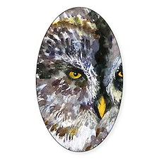 Yellow Owl Eyes Decal
