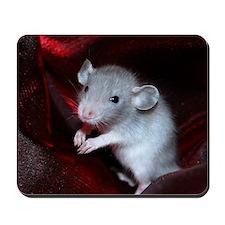 Jasper Mousepad
