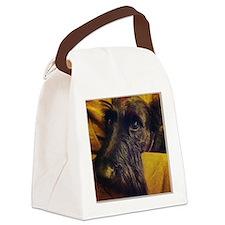 Donovan Canvas Lunch Bag