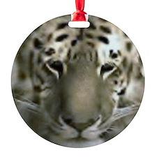 liger Ornament