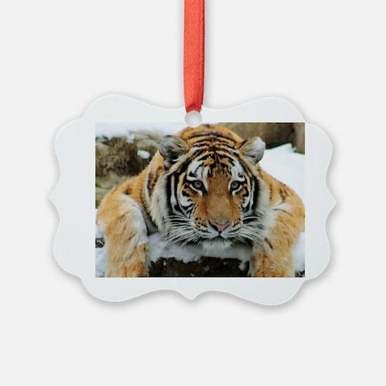 Tiger Watch Ornament
