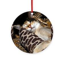 Singapura Cat Round Ornament