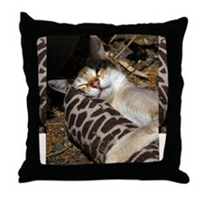 Singapura Cat Throw Pillow