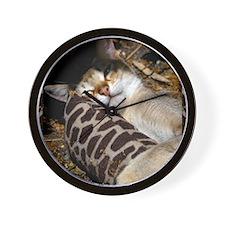 Singapura Cat Wall Clock