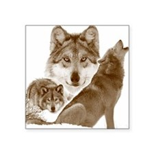"wolves shower curtain Square Sticker 3"" x 3"""