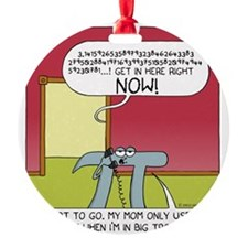 pi Ornament