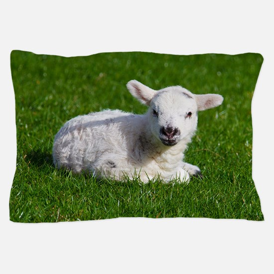 Baby lamb Pillow Case