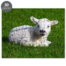 Baby lamb Puzzle