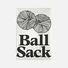Ball Sack Rectangle Magnet