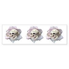 Skull Rose Bumper Sticker