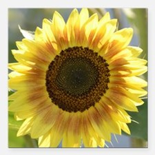 "Yellow Sunflower Square Car Magnet 3"" x 3"""