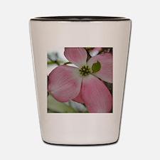 Pink Dogwood Flower Shot Glass