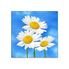 "Daisy Wildflower Square Sticker 3"" x 3"""