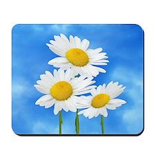 Daisy Wildflower Mousepad