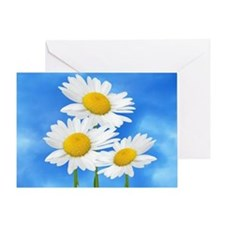 Daisy Wildflower Greeting Card