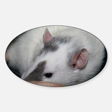Bella Sticker (Oval)