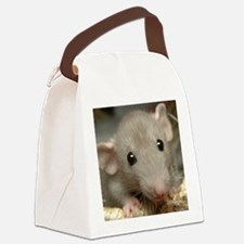Isabelle Canvas Lunch Bag