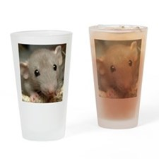 Isabelle Drinking Glass