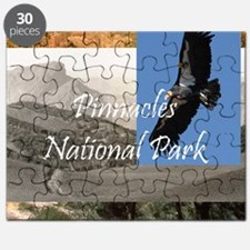 pinnaclessq Puzzle
