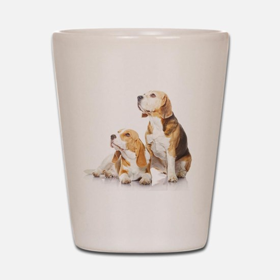Two beagle dogs isolated on white backg Shot Glass