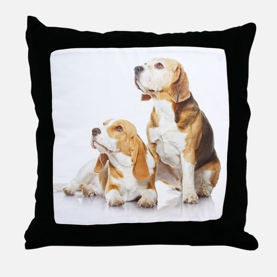 Two beagle dogs isolated on white bac Throw Pillow